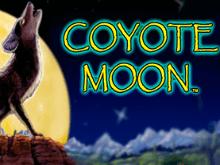 Игровой аппарат Луна Койота